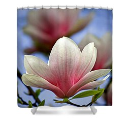 The Color Of Spring Shower Curtain by Evelina Kremsdorf