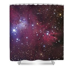 The Cone Nebula Shower Curtain by Roth Ritter