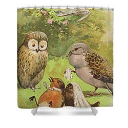 The Death Of Cock Robin Shower Curtain by English School