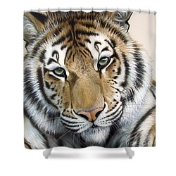 The Embrace Shower Curtain by Sandi Baker