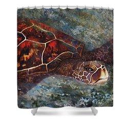 The First Honu Shower Curtain by Kerri Ligatich