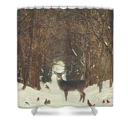 The Forest Of Snow White Shower Curtain by Carrie Ann Grippo-Pike