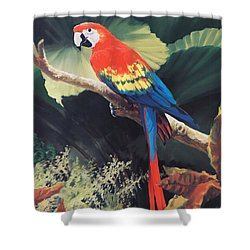 The Gossiper Shower Curtain by Laurie Hein