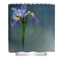 The Harlem Meer Iris Shower Curtain by Chris Lord