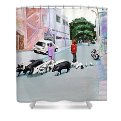 The Herd 5 - Pigs Shower Curtain by Usha Shantharam