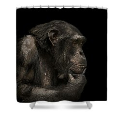 The Listener Shower Curtain by Paul Neville