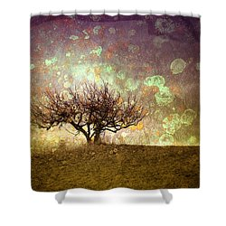 The Lone Tree Shower Curtain by Tara Turner