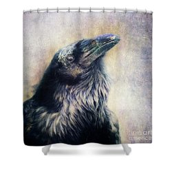 The Many Shades Of Black Shower Curtain by Priska Wettstein