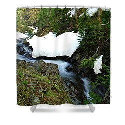 The Promise Of Things Shower Curtain by Jeff Swan