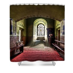 The Reading Room Shower Curtain by Evelina Kremsdorf