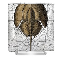 The Remnant Shower Curtain by Charles Harden