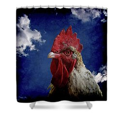The Rooster Shower Curtain by Ernie Echols