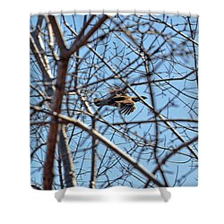 The Ruffed Grouse Flying Through Trees And Branches Shower Curtain by Asbed Iskedjian