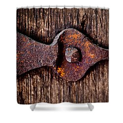 The Rusty Hinge Shower Curtain by Lisa Russo