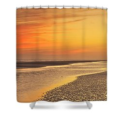 The Shallows Shower Curtain by Phill Doherty