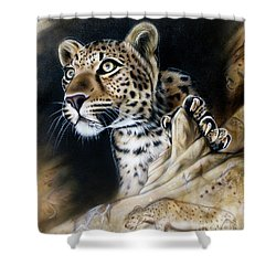 The Source IIi Shower Curtain by Sandi Baker