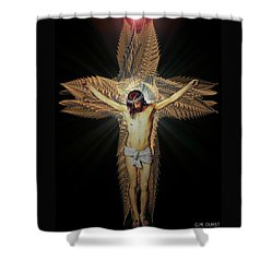 The Transformation Shower Curtain by Michael Durst