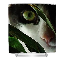 The  Voyeur Shower Curtain by Lynn Andrews