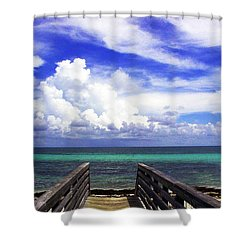 The Way To The Beach 2 Shower Curtain by Susanne Van Hulst