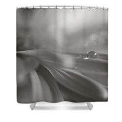 The Way Your Eyes Sparkle Shower Curtain by Laurie Search