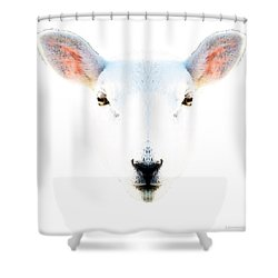 The White Sheep By Sharon Cummings Shower Curtain by Sharon Cummings
