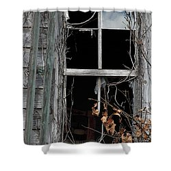 The Window Shower Curtain by Amanda Barcon
