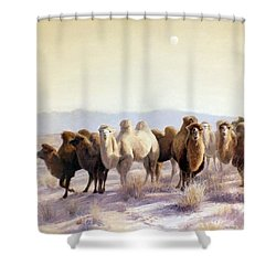 The Winter Solstice Shower Curtain by Chen Baoyi