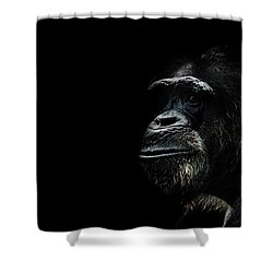 The Wise Shower Curtain by Martin Newman