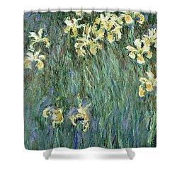 The Yellow Irises Shower Curtain by Claude Monet