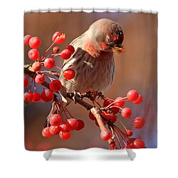These Berries Are Making Me Dizzy  Shower Curtain by Donna Kennedy