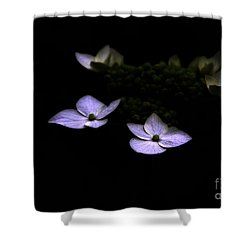 This Little Light Of Mine Shower Curtain by Amanda Barcon
