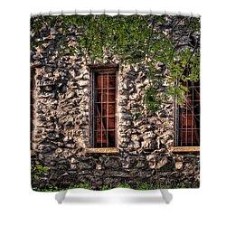 Three Windows Shower Curtain by Tamyra Ayles