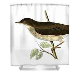 Thrush Nightingale Shower Curtain by English School