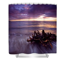 Tide Driven Shower Curtain by Mike  Dawson