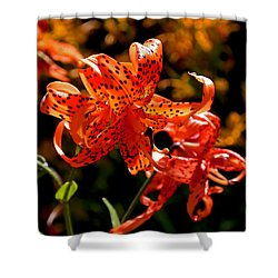 Tiger Lilies Shower Curtain by Rona Black