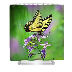 Shower Curtain featuring the photograph Tiger Swallowtail by Rodney Campbell