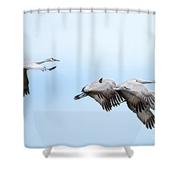 Tight Formation Shower Curtain by Mike Dawson