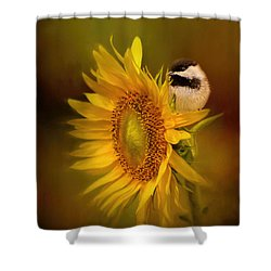 Tiny Surprise Bird Art Shower Curtain by Jai Johnson