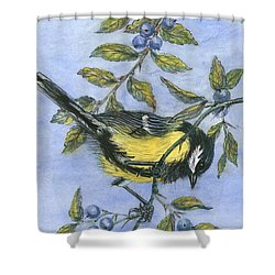 Tit In Blackthorn And Sloe Shower Curtain by Nell Hill