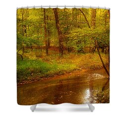 Tranquility Stream - Allaire State Park Shower Curtain by Angie Tirado