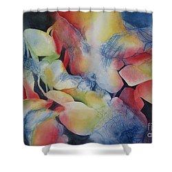 Transformation Shower Curtain by Deborah Ronglien