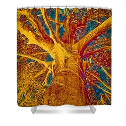 Shower Curtain featuring the painting Tree Crown by Frank Tschakert