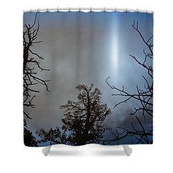 Tree Flash Shower Curtain by Scott Sawyer