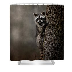Tree Hugger Raccoon Art Shower Curtain by Jai Johnson