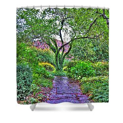 Tree Of Life At St. Luke In The Field Church Shower Curtain by Randy Aveille