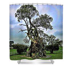 Treehouse Shower Curtain by Douglas Barnard