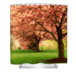 Trees In A Row Shower Curtain by Angie Tirado