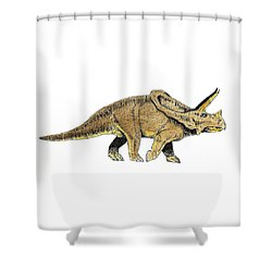 Triceratops Shower Curtain by Michael Vigliotti