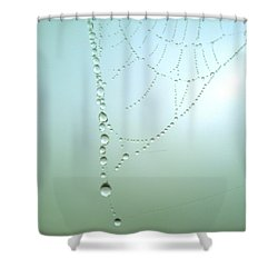 Trinkets By Nature Shower Curtain by Susan Baker