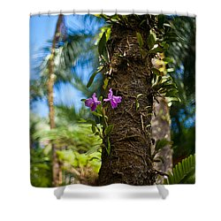 Tropical Beauty Shower Curtain by Mike Reid